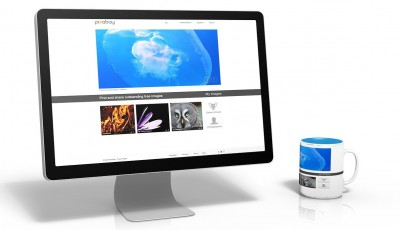 website usability is demonstrated on a pc monitor